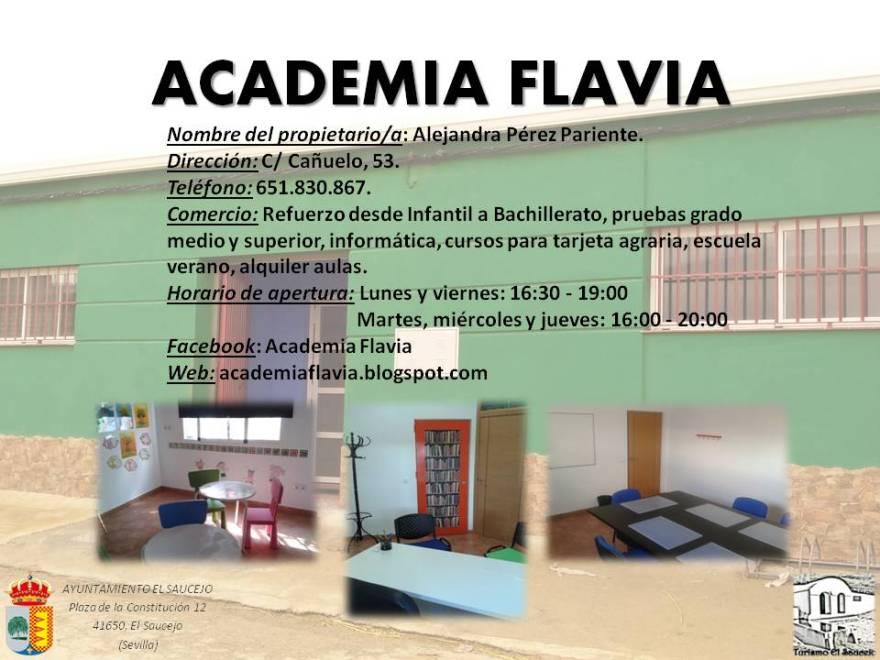Academia Flavia