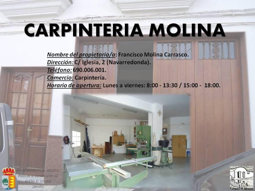 Carpinteria Molina