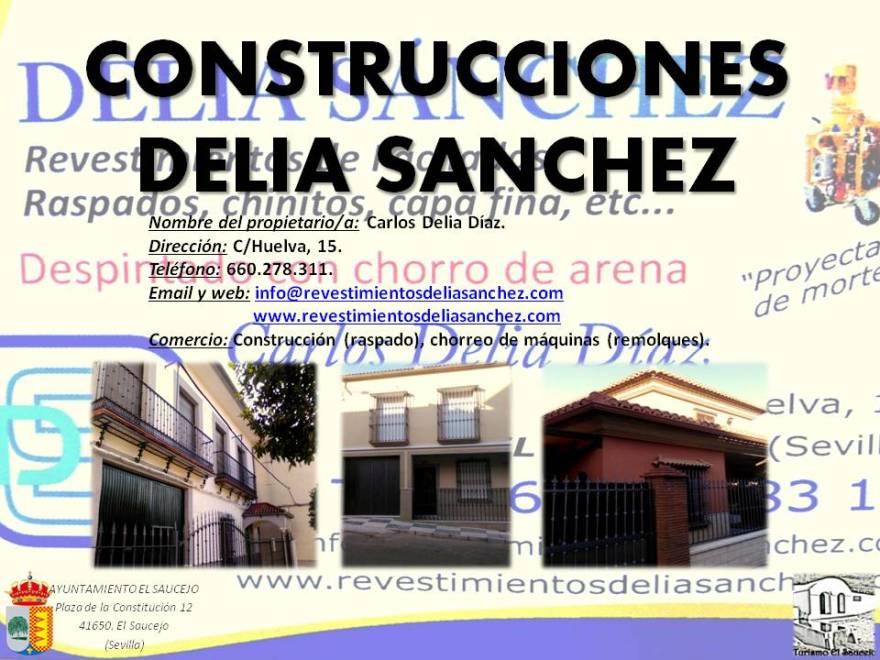 Construcciones Delia Sanchez