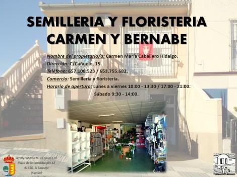 SEMILLERIA Y FLORISTERIA CARMEN Y BERNABE