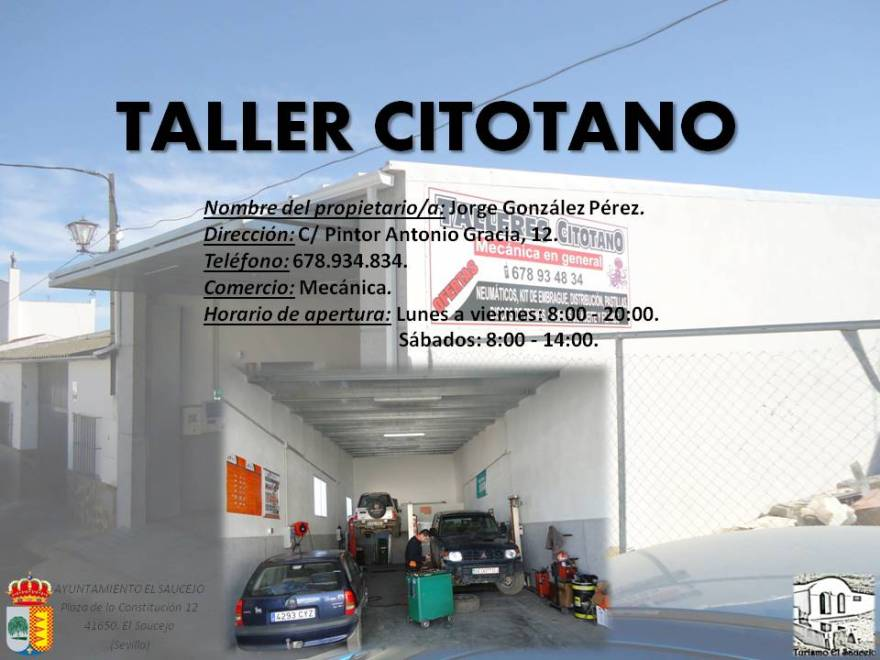 Taller Citotano