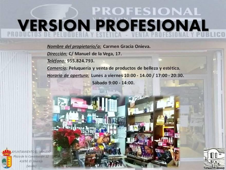 Versión Profesional