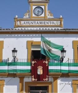 Dia de Andalucia m